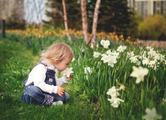 girl-sitting-on-grass-smelling-white-petaled-flower-1879288